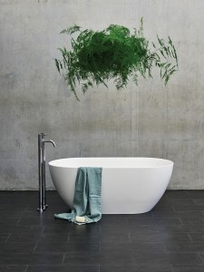 sleek and modern bathtub with hanging plant