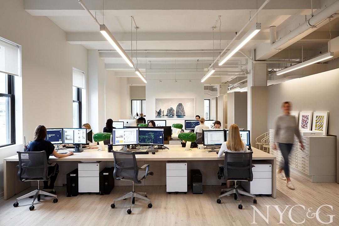 employee's Woking at desks