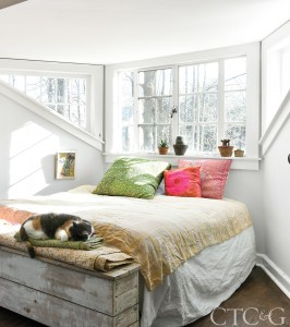 white bedroom with cat and windows
