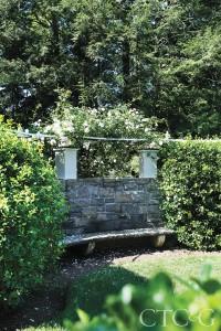 A white rose bush sits behind a stone bench.