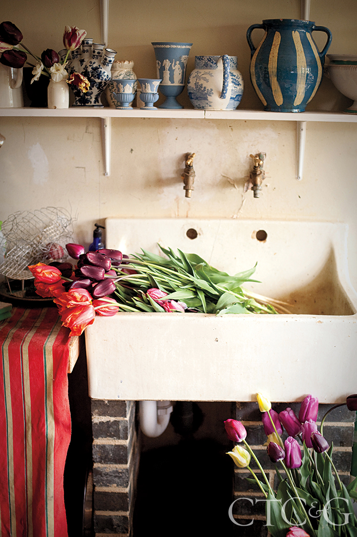 Old Butler Sink With Huge Tulips
