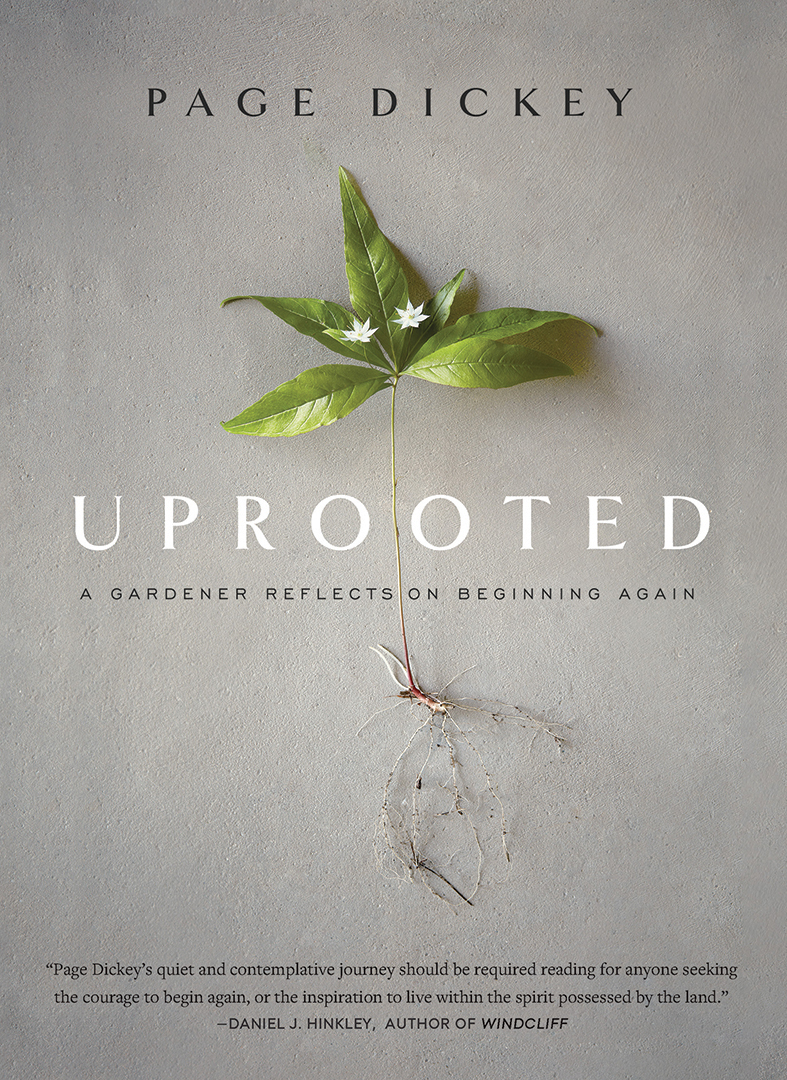 Uprooted Book