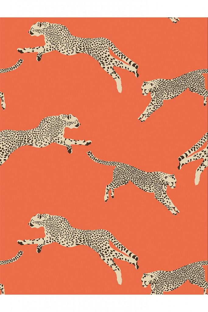 Scalamandre Zebra Pattern