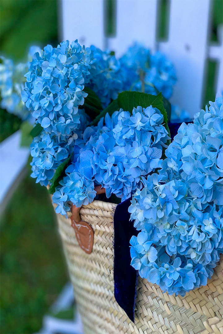 A Change In Course How Merze Lifestyle Was Born Hydrangeas