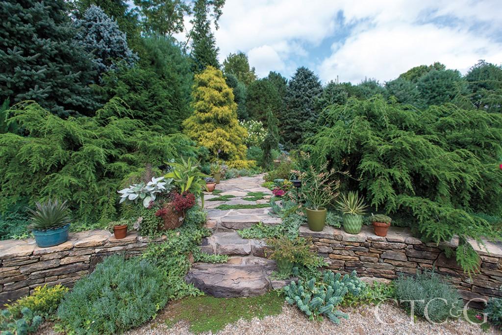 stone path in landscape design