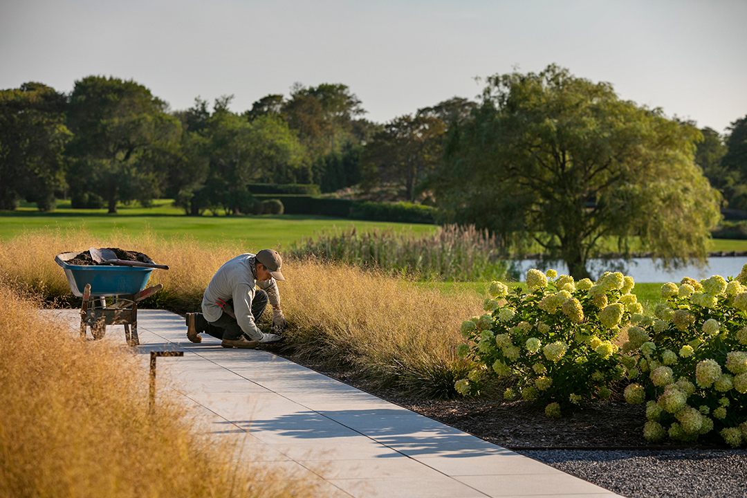 Tour Stunning Landscapes Of The Hamptons Created By Summerhill Photographer Anthony Crissafulli