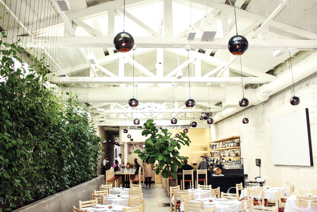 Hayes Valley's stylish Cala restaurant.