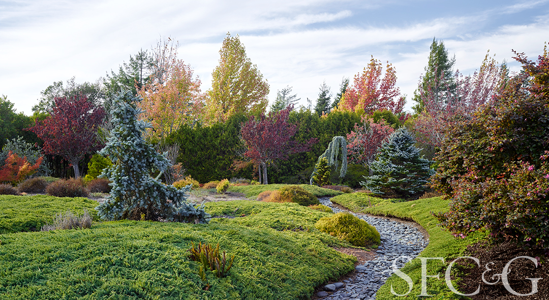 A Watercolorist's Spirit Lives on at Elliott and Anna Branwene's Garden in Sebastopol