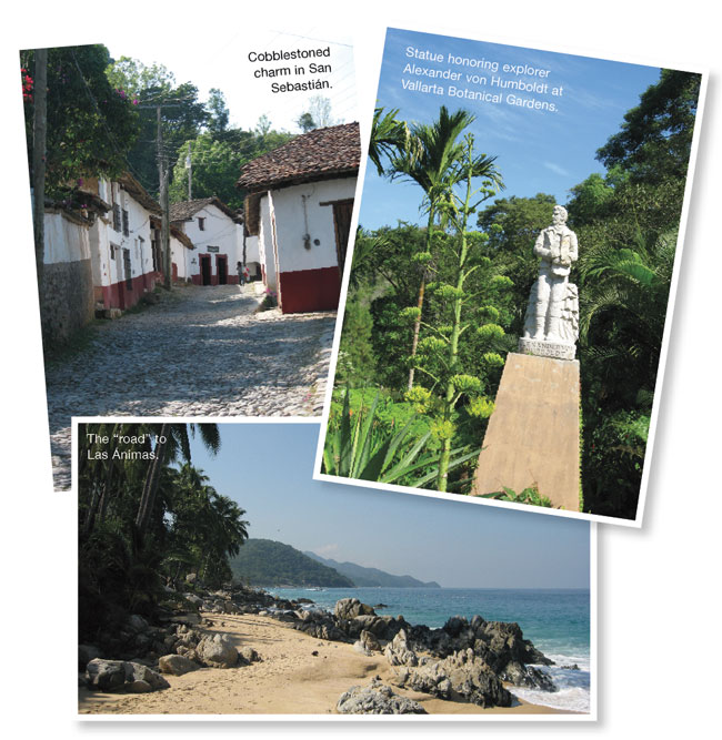 A collection of photographs from San Sebastián, Vallarta Botanical Gardens, and Las Ánimas